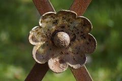 Historic metal flower ornament flower Stock Image