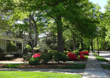 The Historic Neighborhood of Concord, North Carolina Royalty Free Stock Images