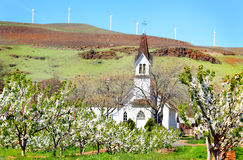 Historic Old Church in Orchard. A front view of a charming old  historical church with a large steeple located behind a fruit tree orchard, under clear blue Stock Image