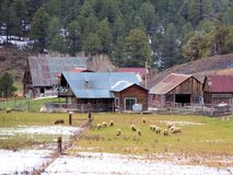 Historic old farm in still in use Royalty Free Stock Image
