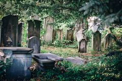 Historic Old Jewish cemetery in Wroclaw, Poland. Background for halloween design and text. The Old Jewish Cemetery in Wroclaw, formerly known as Breslau, Poland Stock Photos