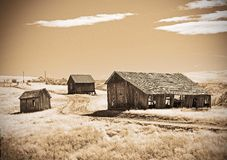 Historic  Oregon Homestead Im Sepia Texture. This Homestead I thought it looked grate in this sepia texture it gives it a cool  isolated  look Royalty Free Stock Photography