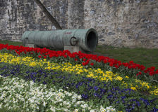 Historic ottoman cannon. Tulip garden, historical ottoman cannon. Used at the conquest of istanbul Stock Photos