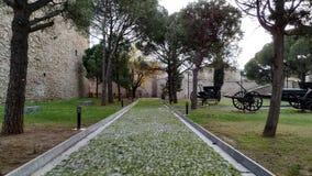 Historic park beautiful. Tree-lined walk way royalty free stock photography