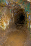 Historic rail tunnel, a part of an old gold mine transportation system located in North Island in New Zealand.  stock photo