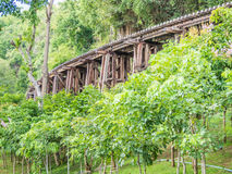 Historic railway train track on wooden bridge in the forest Royalty Free Stock Photos