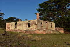 A Historic Ruin. A old historic ruin on Maria Island Royalty Free Stock Photography