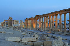 Historic ruin of Palmyra, Syria. Ancient ruins and pillars in twilight at the historic site of Palmyra, Syria Stock Photography