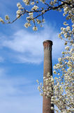 Columbia in Spring royalty free stock photo