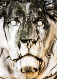 Historic stone lion sculpture Royalty Free Stock Image
