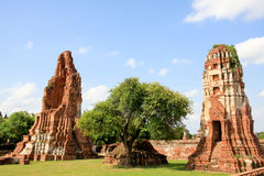 The historic temple in Ayutthaya, Thailand Stock Image