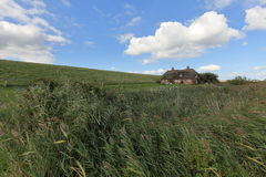 Historic thatched cottage on Pellworm in Schlewig Hollstein Royalty Free Stock Images