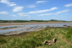 Historic tidal river bank erosion protection scheme at Purton Hulks, Gloucestershire, UK. Obsolete small boats and barges were stranded on the banks of the tidal royalty free stock image
