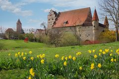 Historic town dinkelsbuhl, with easter daffodils at springtime. Prettiest old town middle franconia, germany Stock Image