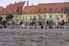 Historic town square with pigeons and people. A crowd of tourists are standing on square with historical and authentic architecture, while children play with the Royalty Free Stock Image