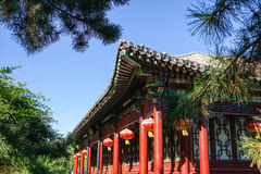 Historic traditional house of Beijing, China. The Historic traditional Chinese house at sunny day with clear blue sky and trees Royalty Free Stock Photography