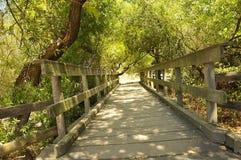 Historic Vintage Bridge Crossing. In Petaluma, California Royalty Free Stock Photo