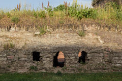 Historic wall in Romania with vegetation grown on it with three smiley holes Royalty Free Stock Photo