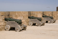 Historic Weapons Royalty Free Stock Image