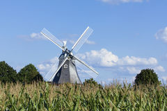 Historic windmill behind corn field Royalty Free Stock Photography