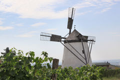Historic Windmill. In the village of Retz in east Austria Royalty Free Stock Photo