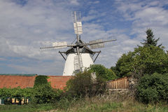 Historic Windmill. In the village of Retz in east Austria Stock Photo