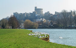 Historic Windsor Castle and the River Thames Royalty Free Stock Image