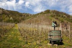 Historic wine press on vineyard Royalty Free Stock Photography