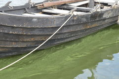Historic wooden boat. Wolin, Poland: Historic wooden boat submerged in greenish water stock photos
