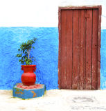 Historical blue  in  antique building door morocco      style af. Historical in     antique building door morocco        style africa   wood and metal rusty Stock Images
