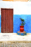 Historical blue  in  antique building      style africa  vase po. Historical in     antique building door morocco        style africa   wood and metal rusty Royalty Free Stock Images