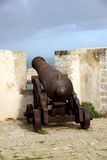 Historical cannon Royalty Free Stock Images