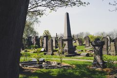 Historical cementery in nature park royalty free stock image