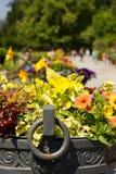 Historical Flower Pots. Flowers in Flower Pots on Historical Balcony stock image