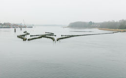 Historical herring weir in morning haze. In the Schlei at Kappeln Stock Photo