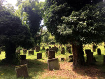 Historical Jewish Cemetery In Worms Stock Photo