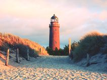 Historical lighthouse. Shinning lighthouse,  dunes and pine tree. Tower illuminated. With strong warning light, dark sky in background. Lighthouse tower built Royalty Free Stock Photos