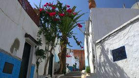 Historical Medina of city of Rabat, Morocco.  royalty free stock image