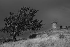 Historical old windmill in a meadow. Black and white Royalty Free Stock Photo