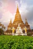 Historical Park, Phra Nakhon Si Ayutthaya, Thailand. Vintage sty. Le Stock Image