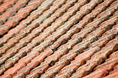 Historical roof in Italy Royalty Free Stock Photos