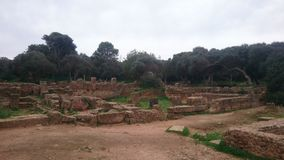 Historical ruins at nord of algeria. Historical ruins of romain - tipaza . algeria stock photos