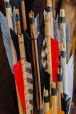 Historical set of old wooden arrows with bright plumage Royalty Free Stock Photography