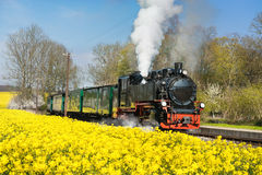 Historical steam train on island Ruegen in spring Stock Images