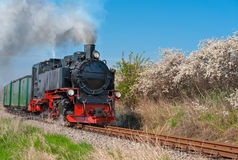 Historical steam train on island Rugen Stock Image