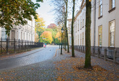Historical street in the Netherlands. An old Dutch street in autumnal colors Royalty Free Stock Photography