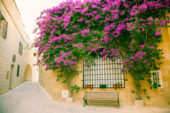 Historical town Mdina, Malta Stock Photo