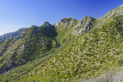 The historical trail - Mount Lowe Raiwaly. Around Mount Wilson Royalty Free Stock Image