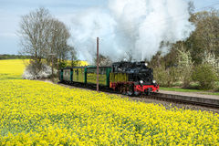 Historical train in spring Stock Images