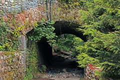 Historical tunnel with vegetation Royalty Free Stock Image